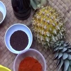 Где и как растут ананасы на плантациях, в домашних условиях и теплицах, как вырастить фрукты дома, фото